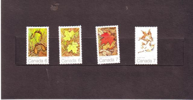 1971 - Maple Leaves - Ashton-Potter - Inside 2